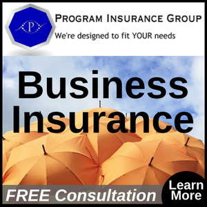 Program Insurance Group